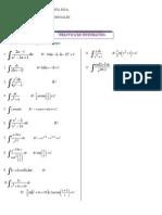 practica_integrales.pdf