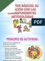 PRINCIPIOS BÁSICOS.pptx