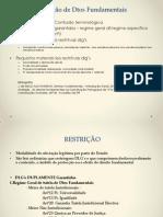 restrição dlg.pptx