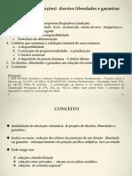 Renuncia A DLG. PP.pptx
