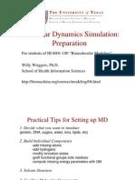 Molecular Dynamics Simulation Preparation