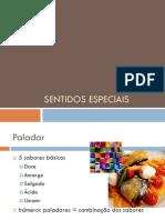 Sentidos Especiais paladar e tacto aula3 (1).pdf