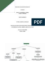 ACTIVIDAD N_2.docx