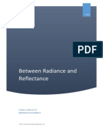 Between Radiance and Reflectance