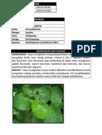 data tanaman mangkokan.docx