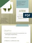 ATEM 2.pptx