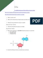 Nucleic Acids Web