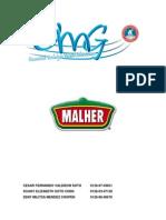 analisisi caso malher  sa   pronacom 1