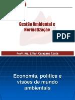 Econimia, política e visoes ambientais.ppt