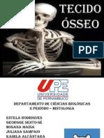 Tecido Ósseo - Original.pptx