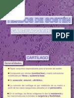 Cartilago_y_hueso_2012.pdf