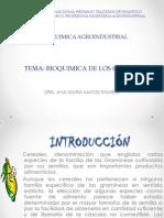 TEMA 3 BIOQUIMICA DE LOS CEREALES (1).pptx