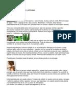 Mezcla anticaída de cabello y anticaspa y la iliada.docx