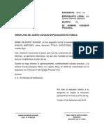 CURADOR PROCESAL.docx