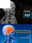 06. Sistema endocrino.ppsx