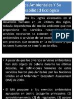 servicios ambientales.pptx