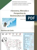 1. Panorama e perspectivas de mercado.pdf