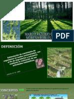 BIORREMEDIACION DE SUELOS.ppt