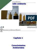 unicon impacto ambiental.pdf