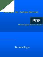 clases de Patología del SNcentral y peeriférico 2 - copia.ppt