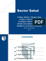 Sector Salud.pptx