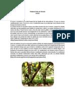 Características agroecológicas del cultivo fruver.docx