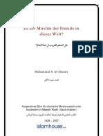 Ist der Muslim der Fremde in dieser Welt?