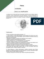 Física (1).docx