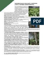 articulo_gedeco_01_2011.pdf