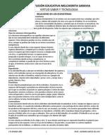 Relaciones interespecíficas en un ecosistema.docx