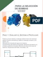 MManual Estudiantil de seleccion de bombas..pps
