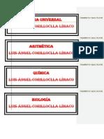 teorias del aprendizaje LUIS.docx