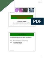 1. Dr Ruswana Patofisiologi Dan Diagnosis Adenomiosis