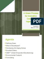 Team Works 2012 Green Process