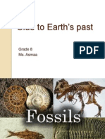 clue to earths past-fossils