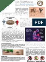 Posters_chikungunya_ext.pdf