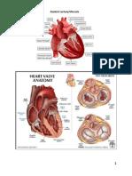 PBL Skenario 1 Blok Cardio