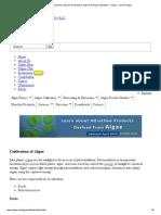 Cultivation of Algae Strains, Species for Biodiesel, Algal Farming for Biodiesel - Oilgae - Oil From Algae