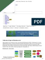 Cultivation of Algae - Photobioreactor - Oilgae - Oil From Algae