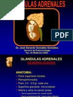 27GlandulasSuprarrenales.ppt