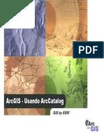 Usando_ArcCatalog.pdf