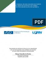 ThiagoRR.pdf