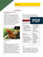 backyard-chicken-basics.pdf