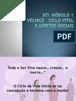 ciclo_vital.pptx