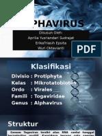 Alphavirus (Kel 13)