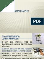 platelmintos.pptx
