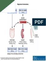Clin Kidney J 2012 Feb 5(Suppl 1) i15-24, Fig. 1