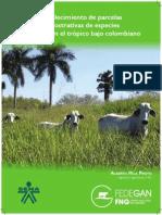 establecimientoparcelas-130729115405-phpapp01.pdf