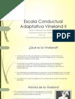 Escala Conductual Adaptativa Vineland II