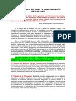 LOS PRINCIPIOS RECTORES DE MI ORGANIZACIÓN SINDICAL.docx